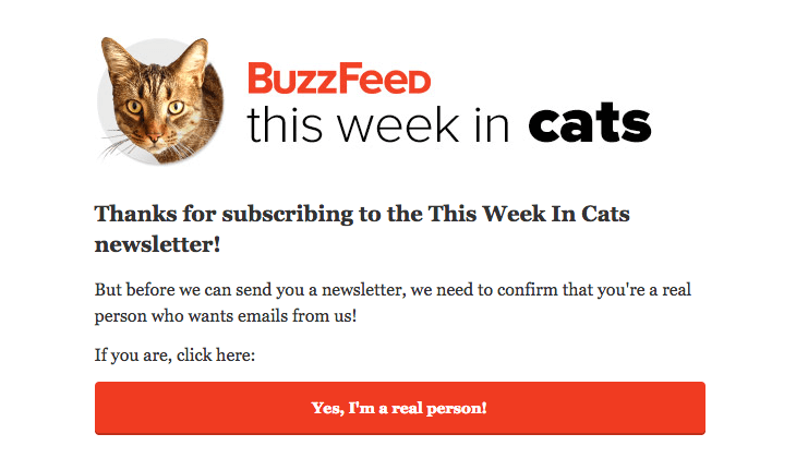 Confirmation email from BuzzFeed