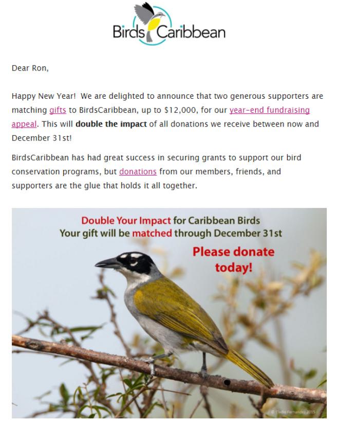 Birds Caribbean